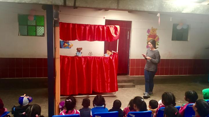 Sanitation puppet program