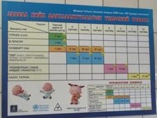 Vaccination Chart (The one on the bottom is in English) FYI this is what Mongolian Cyrillic looks like